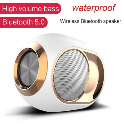 Portable Subwoofer Wireless Bluetooth 5.0 Speaker Music Surround Loudspeake With Mic for Laptop Phone TF Card USB stick AUX