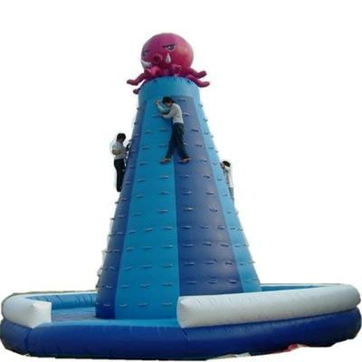 Large inflatable sports inflatable climbing wall /PVC inflatable climbing rock game