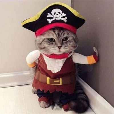 Funny Pet Clothes Cosplay Pirate Dog Cat Halloween Party Cute Comfort Costume Clothing For Small Medium Dog Corsair Dressing Up