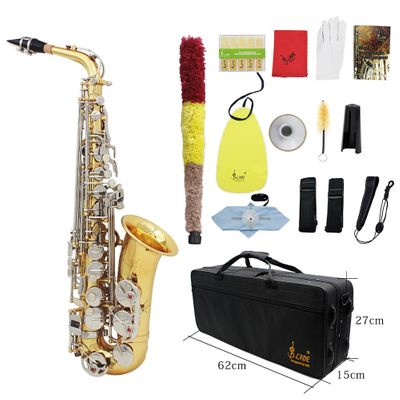 LADE Alto Saxophone Sax Glossy Brass Engraved Eb E-Flat Natural White Shell Button Wind Instrument with Case Mute Gloves