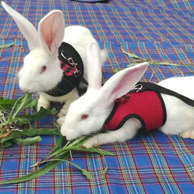 Small Animals Harness and Leash Set For Hamster Rabbits Bunny Ferret Guinea Breathable Mesh Dog Harness Pets Vest Pet Supplies