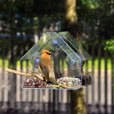 New Creative Window Bird Feeders Clear Glass Window Viewing Bird Feed Hotel Table Peanut Hanging Suction For Pet Birds Outdoor