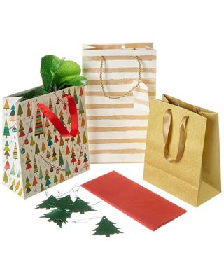 The Gift Wrap Company Assorted Gift Bag Set