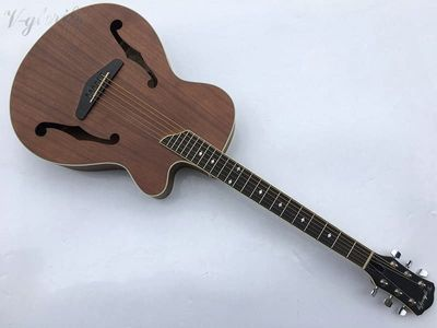 F hole acoustic-electric guitar with tuner free shipping/matte finish chrome diecast guitarra elétrica