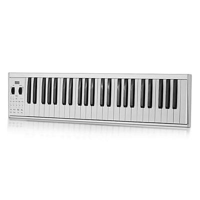Portable Electronic Keyboard Piano 49 Lighted Keys Electric